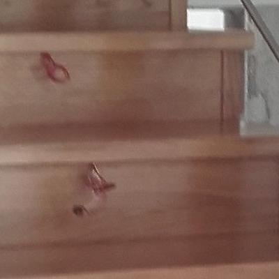 drewniane schody 03
